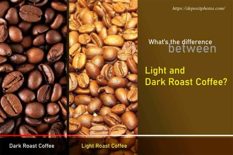 light vs dark roast coffee