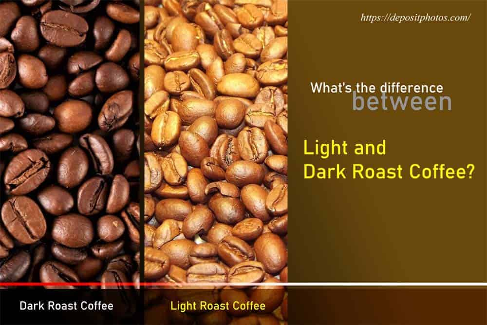light vs dark roast coffee